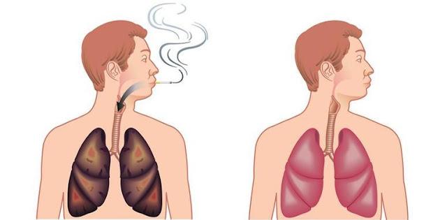 Les fumeurs devraient savoir cela! Ces aliments peuvent nettoyer la nicotine dans votre corps