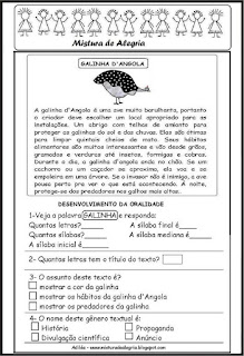 Texto informativo galinha d'angola