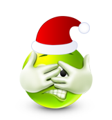 Christmas Smiley Icon 15