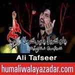 http://www.humaliwalayazadar.com/2014/02/ali-tafseer-nohay-2015.html