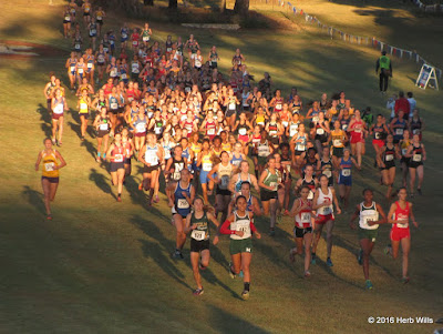 FHSAA 3A Girls' Cross Country Championship