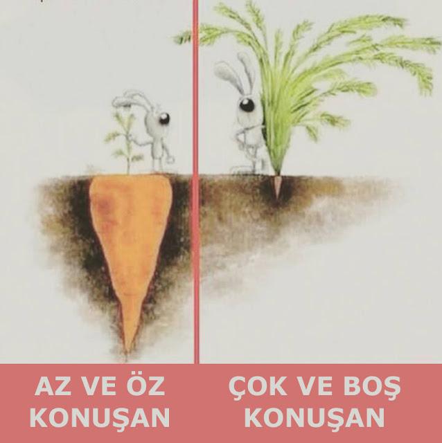 tavşan, havuç, yeraltı, toprak, verimlilik, icraat