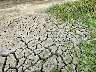 Water Crisis Facts, DRY LAKE