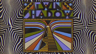 """Allow Us To Introduce You To Twin Shadow & His Kaleidoscopic Funky Sonics """"Is There Any Love""""!"""