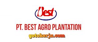 Lowongan Kerja PT Best Agro International