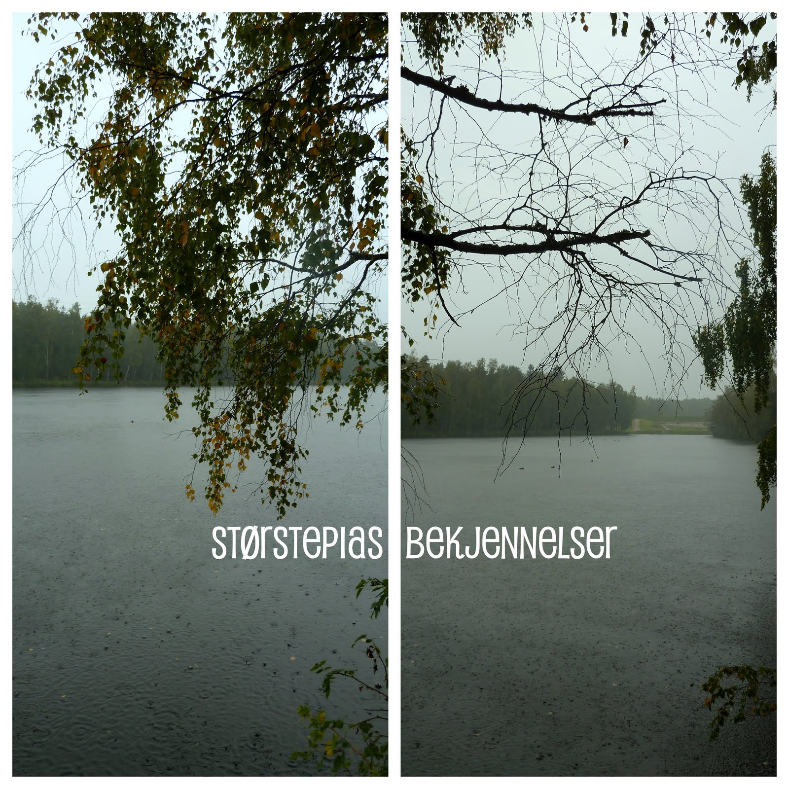 c01d4d84 øsende regn, pøsende regn, regn, regn, regn, regn, deilig og vått, deilig  og rått!