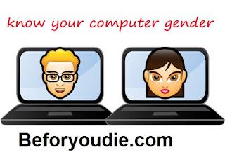 Computer's Gender