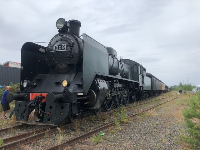 Muumiaiheisella seikkailujunalla Helsingistä Naantalin Muumimaailmaan