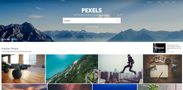 Pexels сайт для бесплатного скачивания красивых картинок(1)