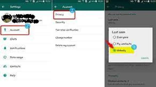 Cara Agar Tidak Terlihat Online di WhatsApp