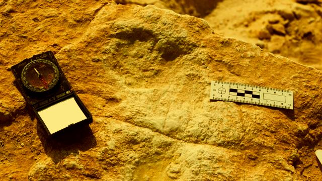 120,000-year-old human footprints found in Saudi Arabia offer glimpse into humanity's past  120%252C000-year-old-ancient-footprints