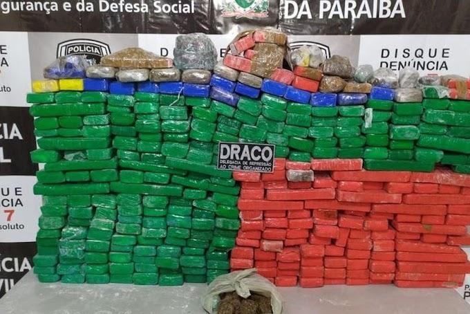 Cerca de 350 quilos de maconha são apreendidos em sítio no Sertão da Paraíba