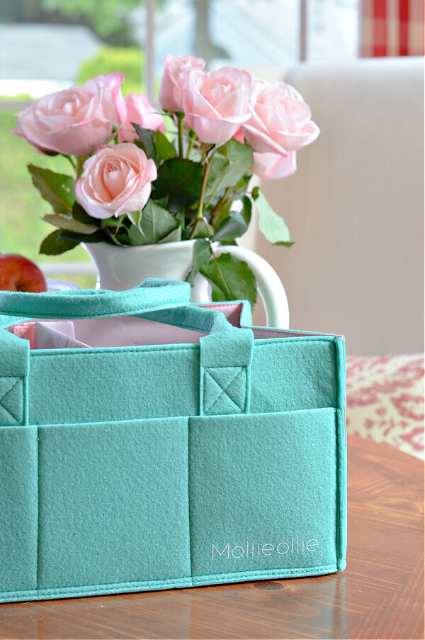 Mollie Ollie Mimmo Caddy Teal in front of vase of roses