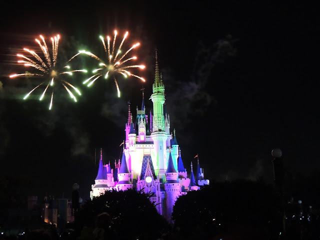 10 cool facts about disney world