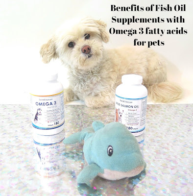 Benefits of Omega 3 supplements for pets.  Benefits of fish oil for dogs and cats.