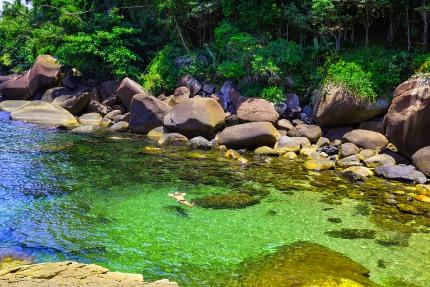 Tarzan történetek - a bajnok, dzsungelgyilkosságok