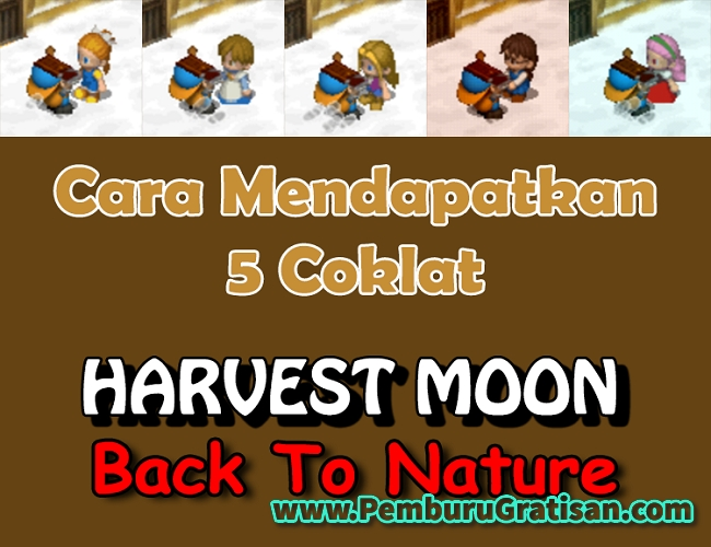 cara mendapatkan coklat di harvest moon back to nature