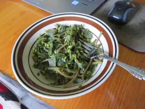 cooked purslane