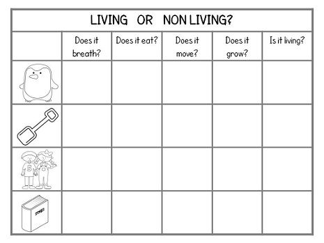 Natural Science Living Things Features on Circulatory System Worksheets For Kids