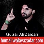 https://humaliwalaazadar.blogspot.com/2019/09/gulzar-ali-zardari-nohay-2020.html