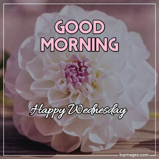 good morning images with happy wednesday