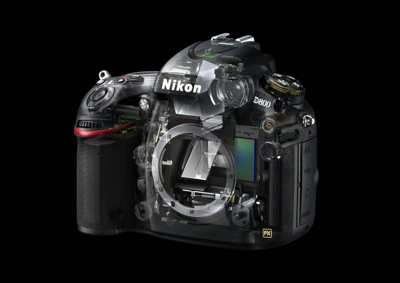Nikon D800 Software and Firmware Download