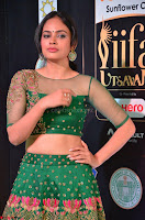 Nandita Swetha in a tight Green Choli Ghagra at IIFA Utsavam Awards March 2017 ~ 012.JPG