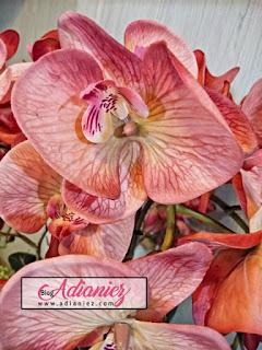 Dekorasi Ruang Tamu   Gubahan orkid super premium latex penambah seri di ruang makan