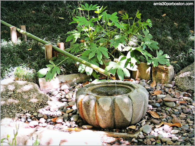 Fuente Tsukubai del Jardín Japonés de Fort Worth
