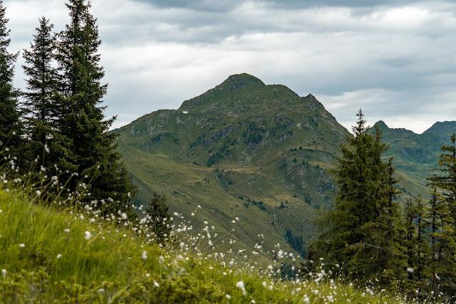 Schusterkogel  Bergwanderung Saalbach  Talschluss Hinterglemm  Wanderung-Saalbach  Wandern-Saalbach SalzburgerLand 14