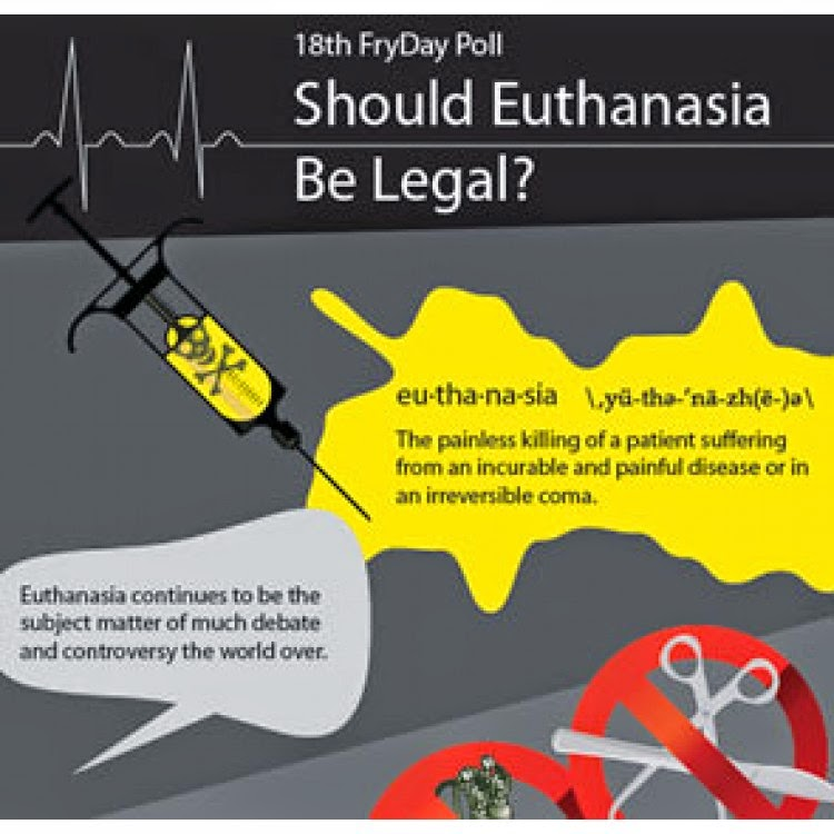 Should Assisted Suicide Be Legalized Essay – 305996