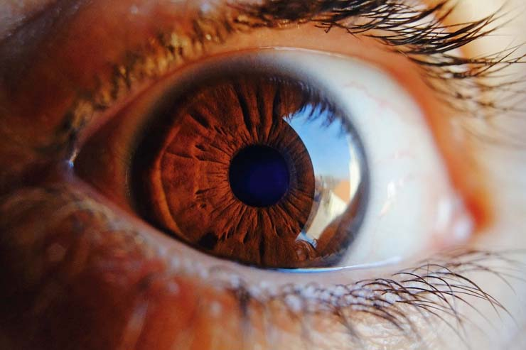 What is Glaucoma??? Types, Symptoms, and Treatments