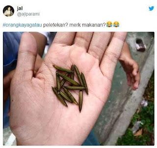 #orangkayagatau