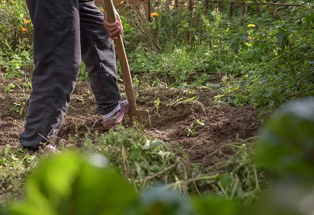 Gardening digging