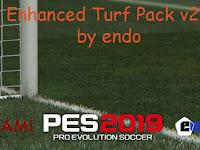 PES 2019 Enhanced Turf Pack V2 AIO dari Endo