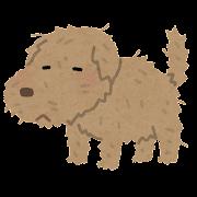 ボロボロの犬のイラスト