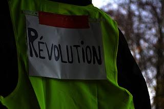 Revolusi kehidupan
