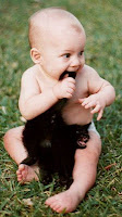 A baby chewing a kitten tail  | Exclusively Cats Veterinary Hospital, Waterford, MI