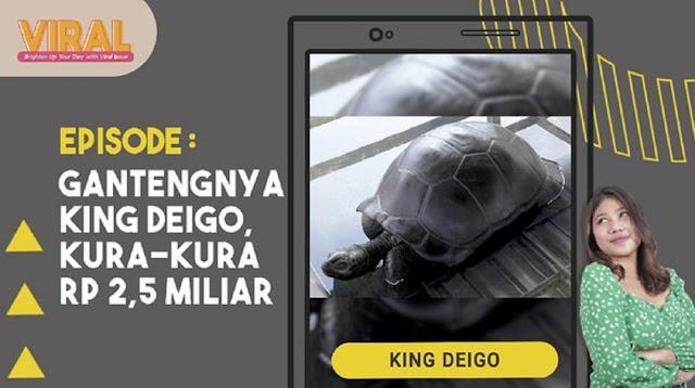 Mengenal Kura-kura Aldabra yang Harganya Tembus Rp 2,5 M