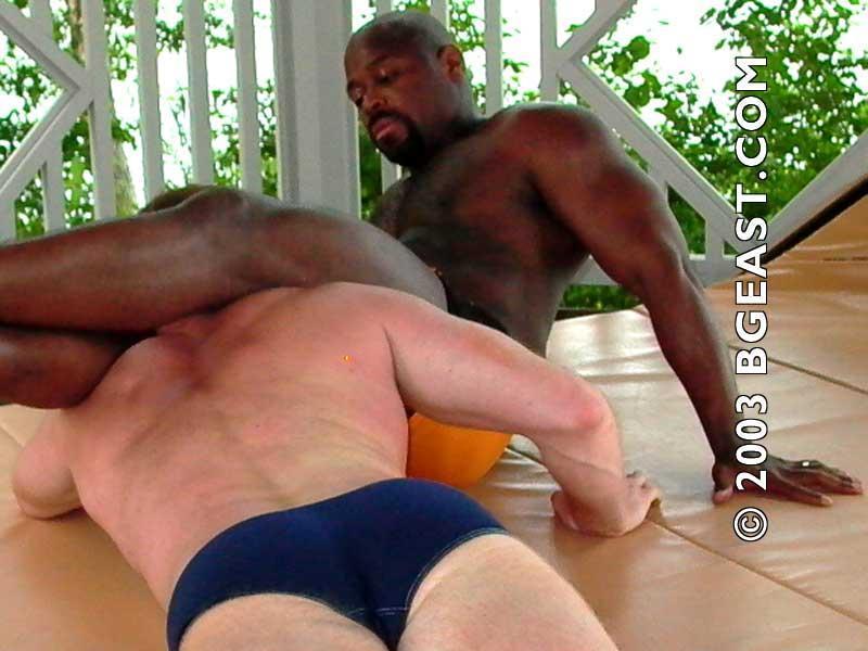 Free ebony sex video