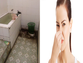 Cara Menghilangkan Bau Wc