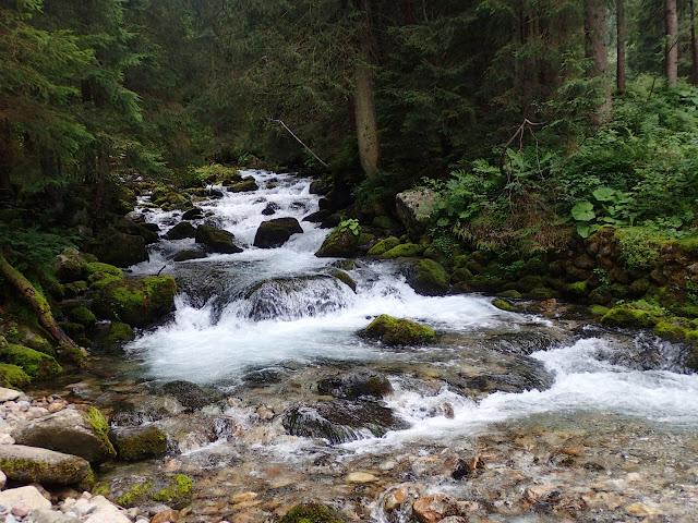 Ostatni odcinek idę wzdłuż potoku Bystra, Doliną Bystrej
