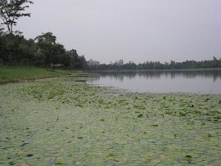 Ramsagar National Park