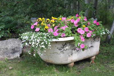 Una tina llena de flores