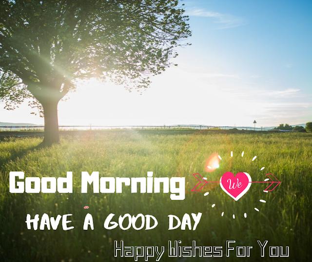 Shining Sun Good Morning  images