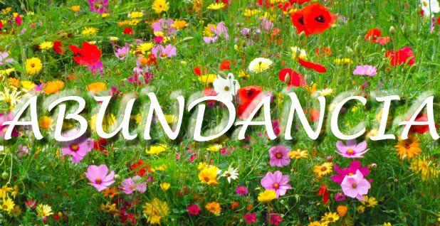 LAS GOTITAS DE PELUSA: Estoy en Abundancia