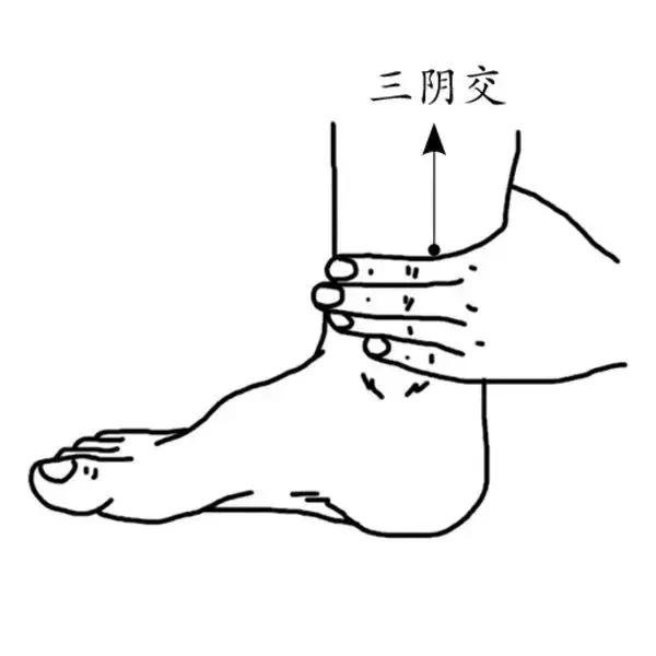 5大防病保健穴,每天按一按,從頭到腳都舒坦