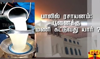 Ayutha Ezhuthu Neetchi 25-05-2017 Adulteration in milk : Who is responsible..?