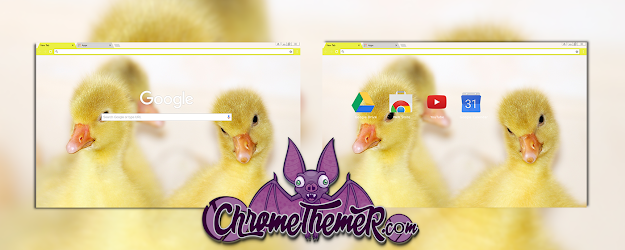 Baby Ducks Google Theme  | Chrome Web Store