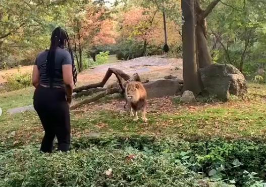 Myah-Autry-Lion-woman